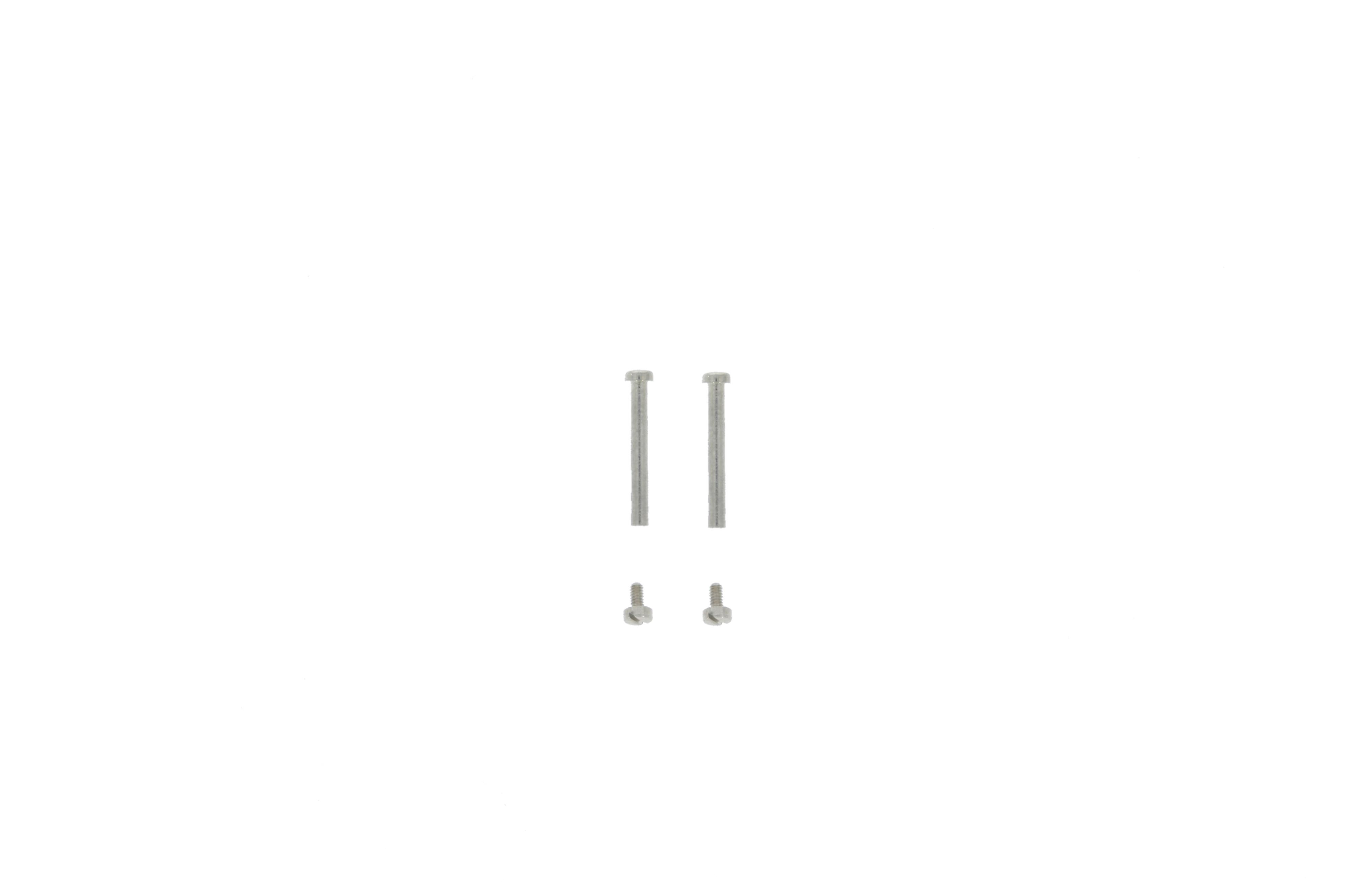 DKNY NY8834 Horlogeband/-kast Schroefpen (2 stuks)