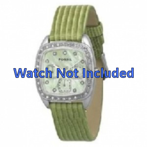 Fossil horlogeband ES1010