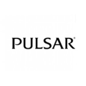 Horlogeband Pulsar 70P8JG / Y182 6d40 Staal Staal